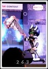 Cosplay Gallery - Thailand Game Show BIG Festival 2015